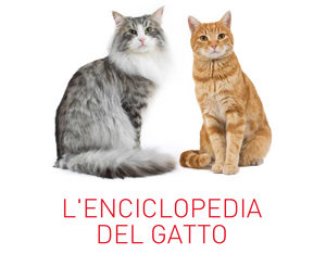 enciclopedia-del-gatto-royal-canin